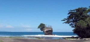 Pantai karangseugeuh - Bulben Cimerak